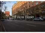 calle-frontal